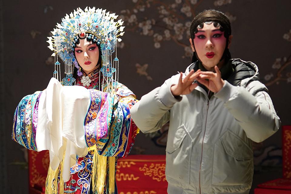 《鬢邊不是海棠紅》: 網劇里的京劇,京劇里的人生
