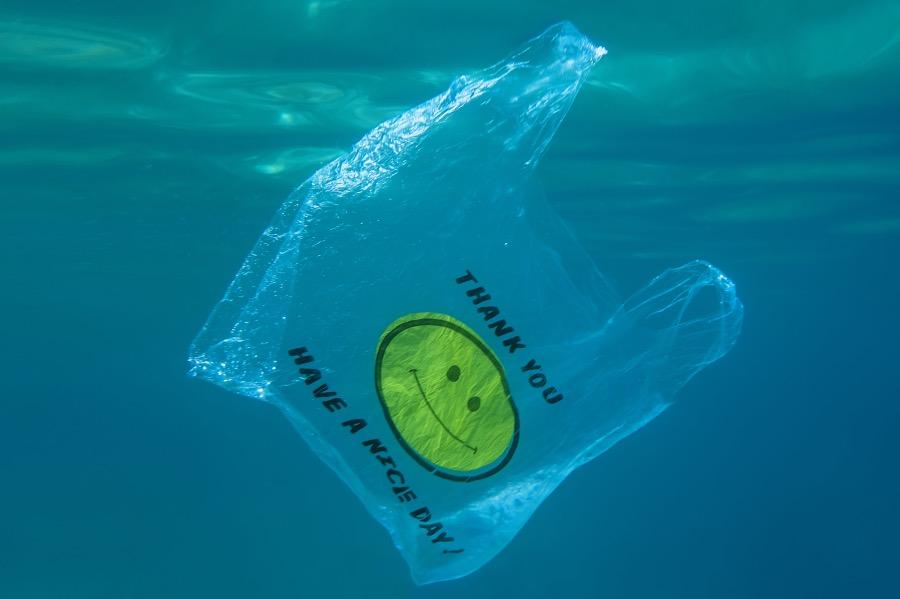 """深海海底的塑料""""绿洲"""""""