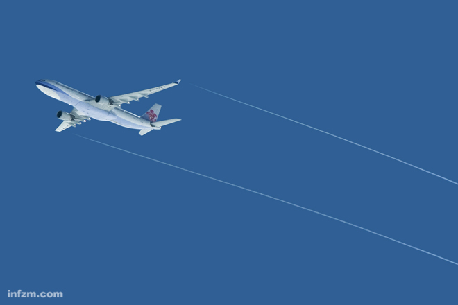 【飞机问答】小鸟撞到飞机怎么办?