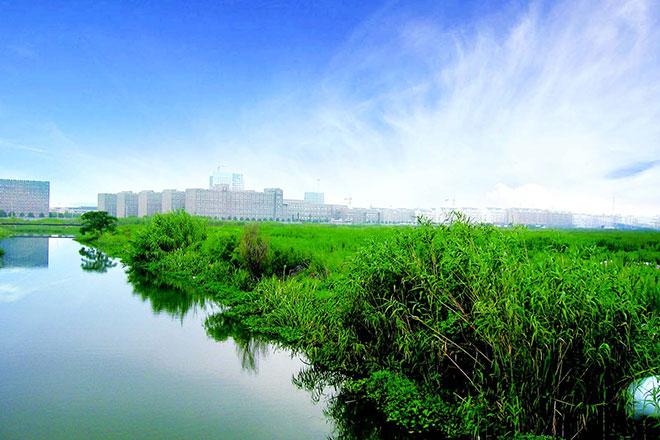 宁波鄞州造城记 水稻田上的城市