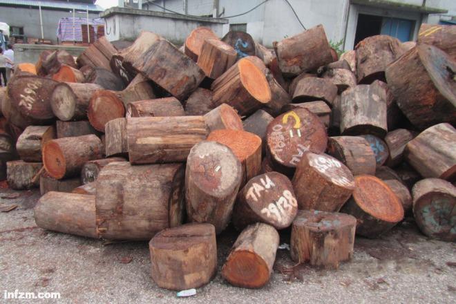 """造孽的雨林砍伐,""""合法""""的原木进口 """"不只彩""""的国际木料贸易"""