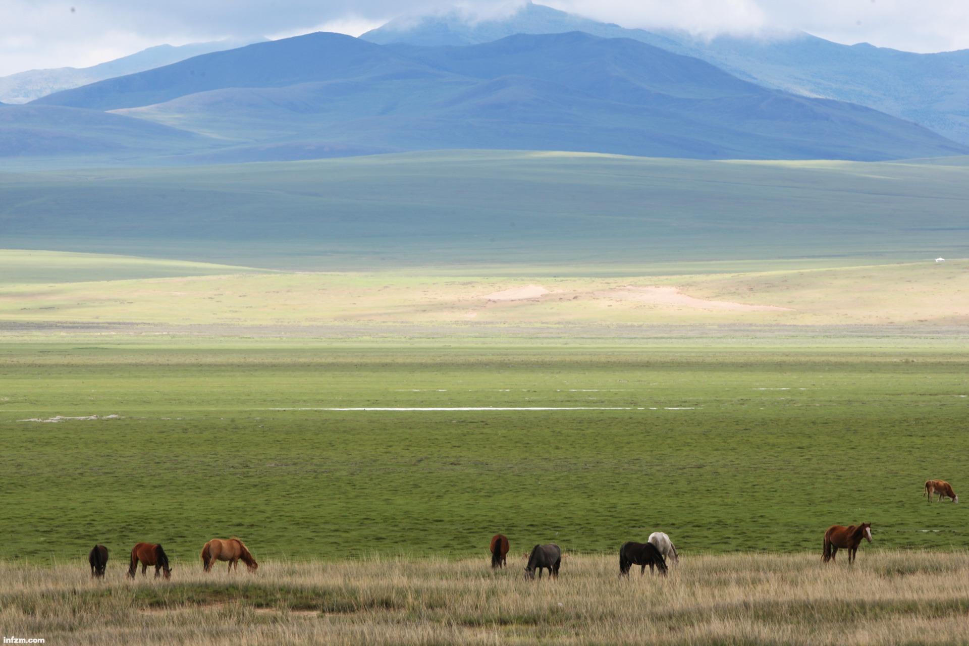 05 蒙古国大草原胜景