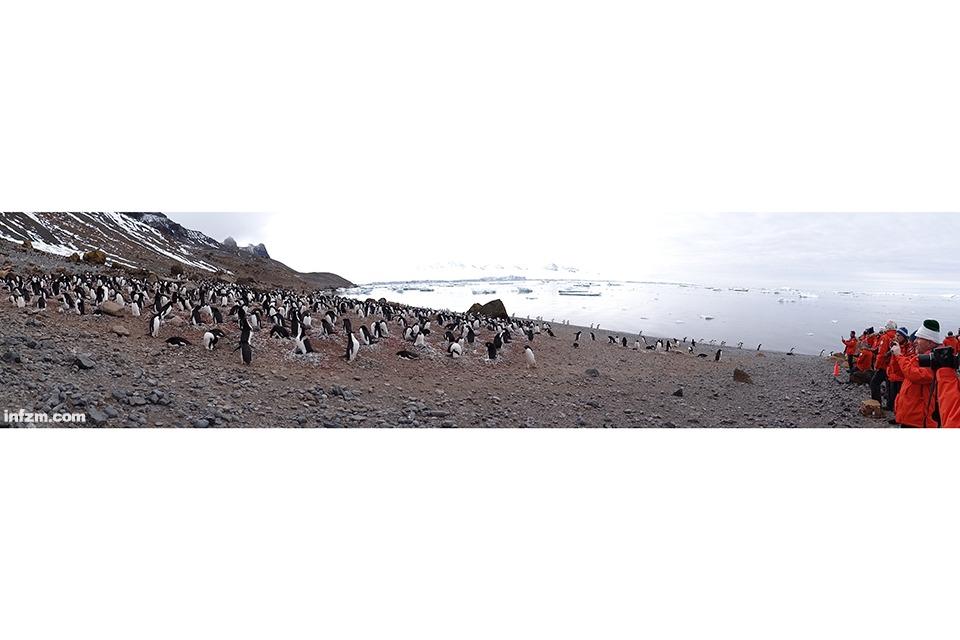 06 我听到最美的声音,是南极的呼吸