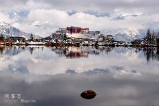 01 西藏的三月:下雪,开花