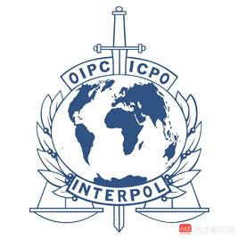 揭秘:孟宏伟落马后国际刑警组织如何运转,新任掌门如何选出?