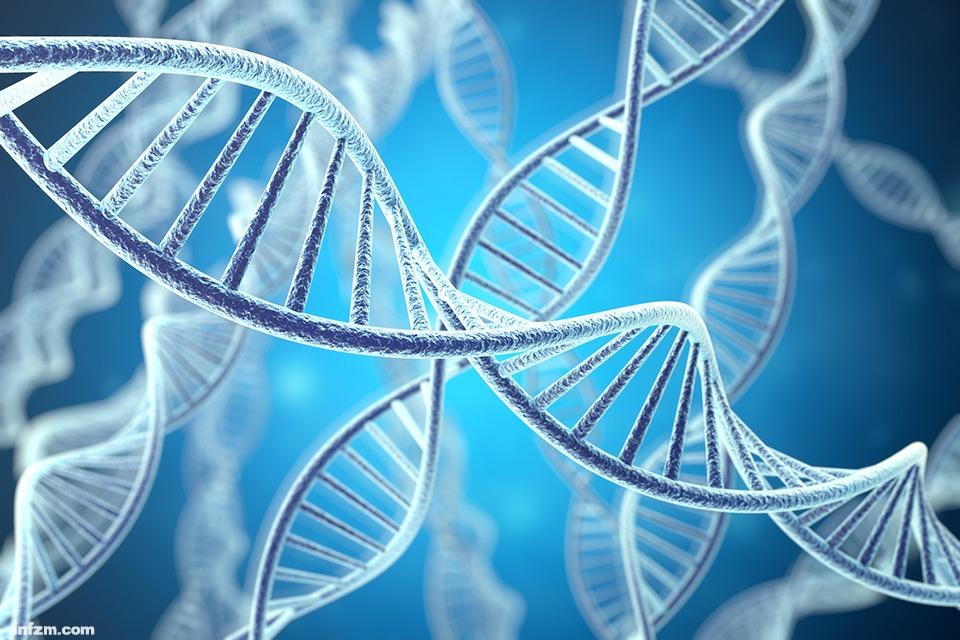 生命自然法则再次被打破,8碱基DNA会给人类带来灾难吗?