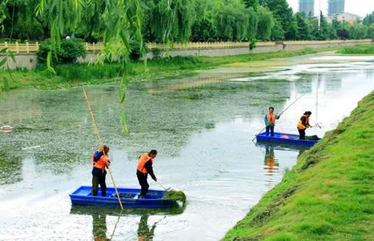 安徽省淮北市老濉河,工作人员在打捞河道内的漂浮物。(人民视觉)