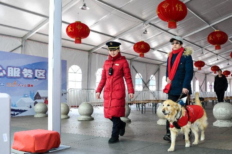 在苏州北站工作人员帮助下,导盲犬小Q领着主人苏博进站乘车(1月24日摄)。新华社记者 李博 摄