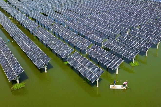 每日壹图:中国|光伏电站旁 农民捕捞小龙虾忙