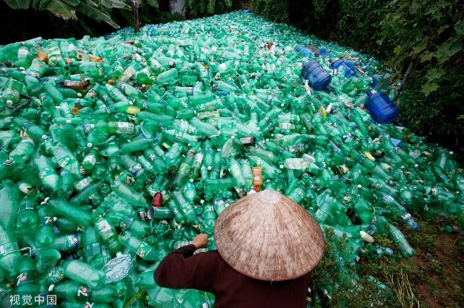 《普通人每周摄入5克微塑料》图为越南河内郊区一名妇女在整理回收的塑料瓶。