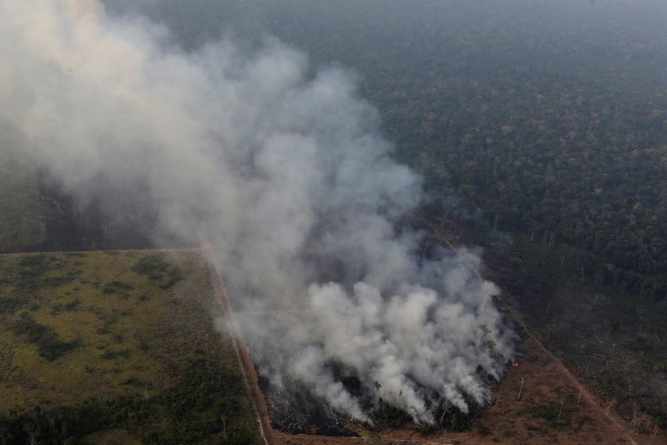 巴西亚马孙雨林惨遭林火肆虐