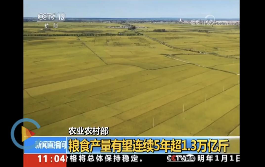 农业农村部:我国粮食产量有望连续5年超1.3万亿斤