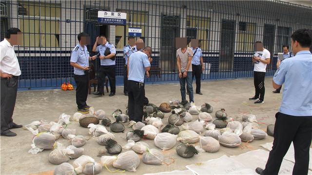 执法人员重拳打击非法贩卖野生动物