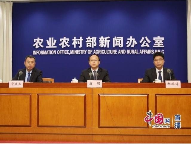 农业农村部:预计元旦、春节前猪肉价格将保持高位运行走势