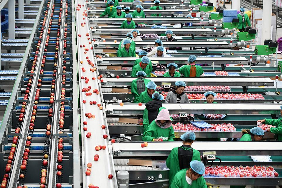 """中国6年减贫8239万,全球13亿人处于""""多维贫困状态"""""""