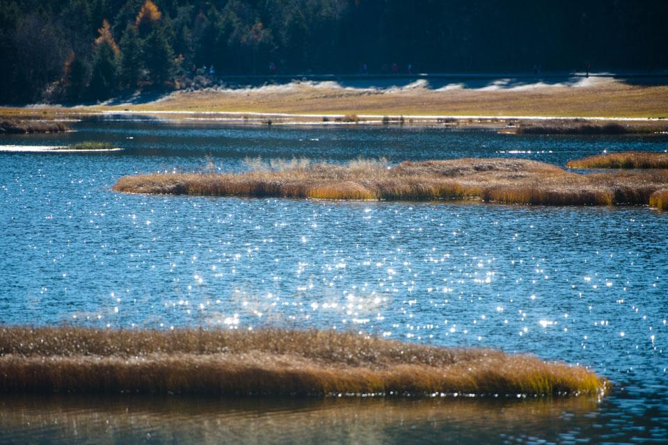 眼睛在旅行丨普达措国家公园