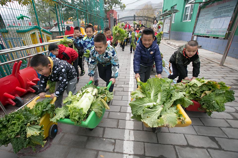 北京朝阳65所民办幼儿园转普惠园  一周教育热点
