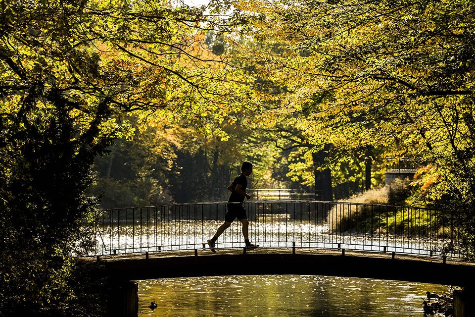 每周跑步一次可降低早逝风险