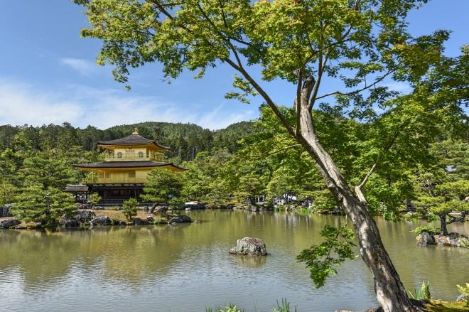 《台北童话丨迷茫的远方》看见金阁的倒影,手可以触摸,眼可以映现的美,以及观念的美……
