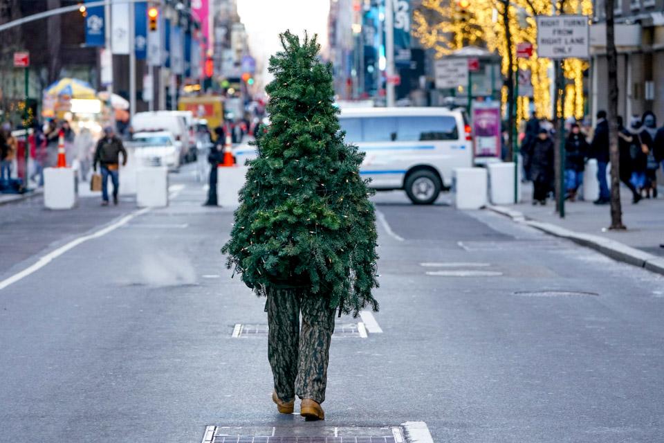 """一棵""""圣诞树""""在街头行走"""