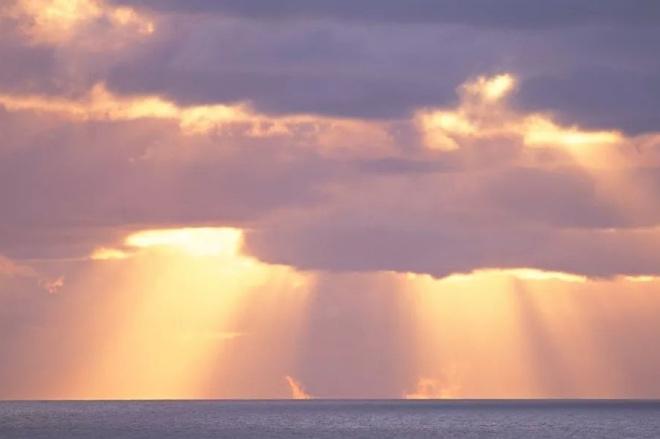 《大家小說 | 天下無雙男金蓮》(圖文無關)源自一位故人的筆記,說是男金蓮的生命力,其實遠在女金蓮之上。