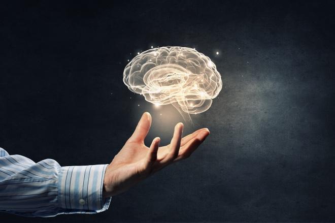 《左腦支配右手99%正確》確實有1%的人,他的運動神經元在腦干這個部位始終不交叉,這樣就出現左側大腦支配左側的手腳。