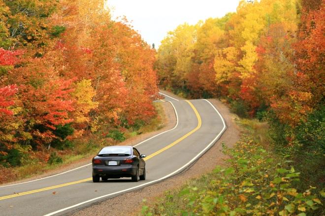 《大家小说丨开回撒尿的地方去》(图文无关)某日,司机驾车在乡间公路上颠簸,书记忽命停车。