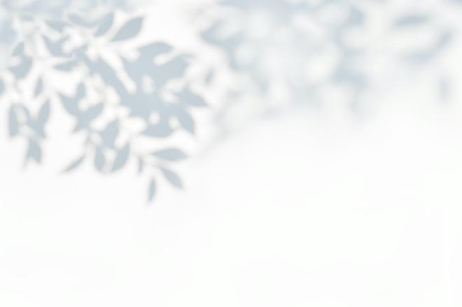 《大家小说 | 恍惚》(图文无关)门外飘起了雪,树、鸟和人都恍惚得很。