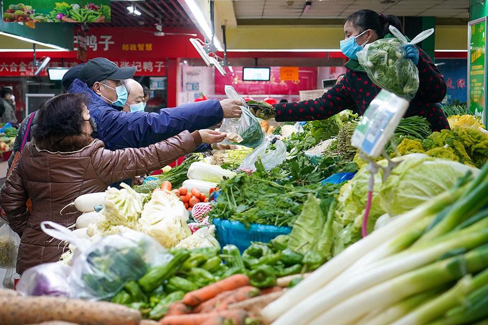 我在南京:父母送菜、政府保障供菜、自己种菜,防疫大计、蔬菜先行