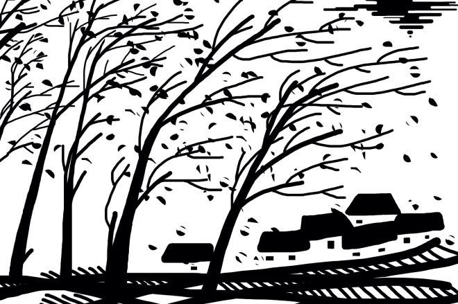 《父母的村莊》(圖文無關)村莊被圈為工業園區后,水田和桑園迅速消失了。