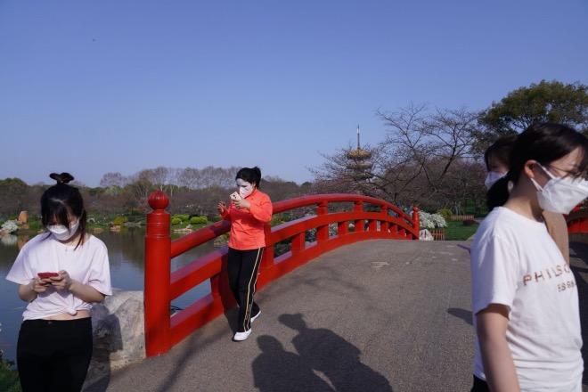 利用空閑時間觀賞櫻花的醫護人員行走在東湖櫻園的步道上。