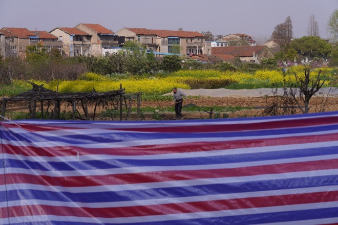武漢市李家墩社區是無疫情小區,3月19日,村民開始下地勞作。1