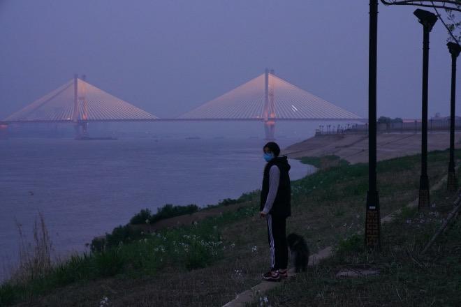 在武昌江灘遛狗的市民。