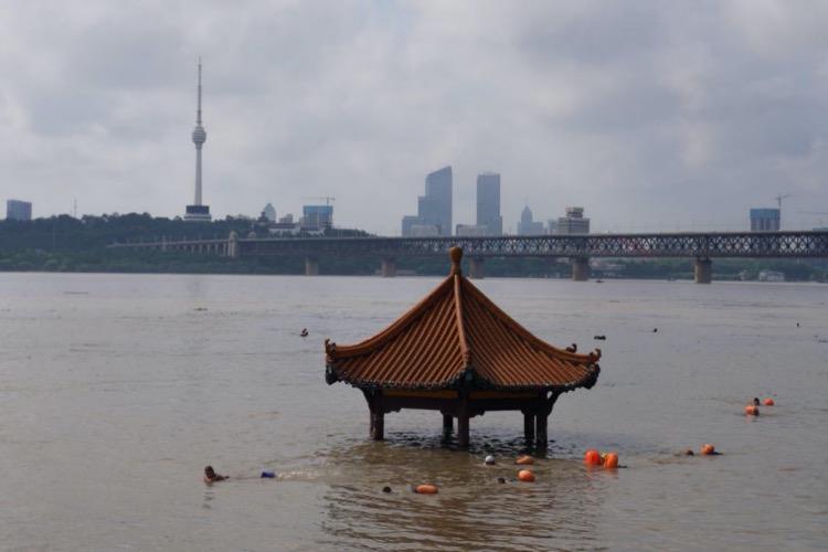 7月6日,市民游泳經過快要淹沒頂子的武昌黃花磯長江親水平臺的亭子。
