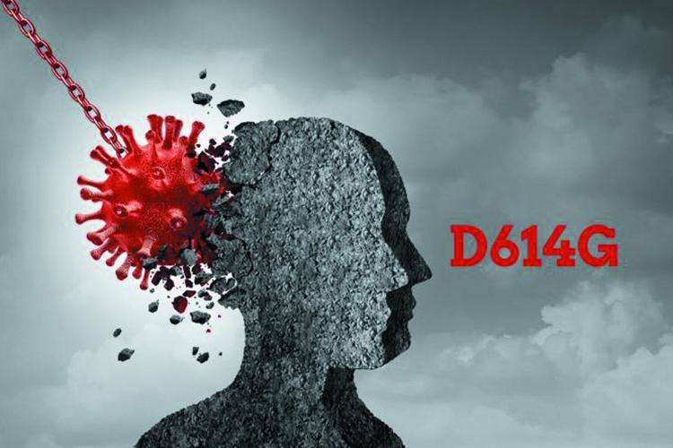 23 为什么 D614G 变异株成为全球主流毒株.jpg