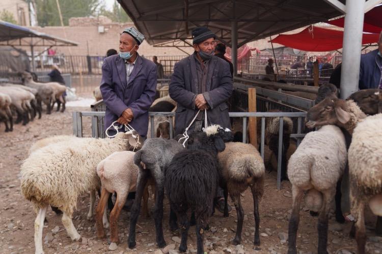 正在等待買家的農牧民。
