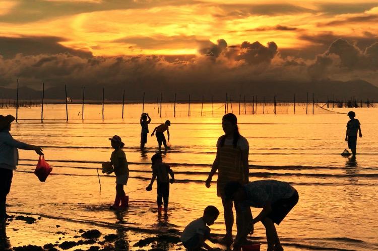 《失樂園記丨家住海陵島》大人帶著小孩到海陵島海灘上游覽拾貝。