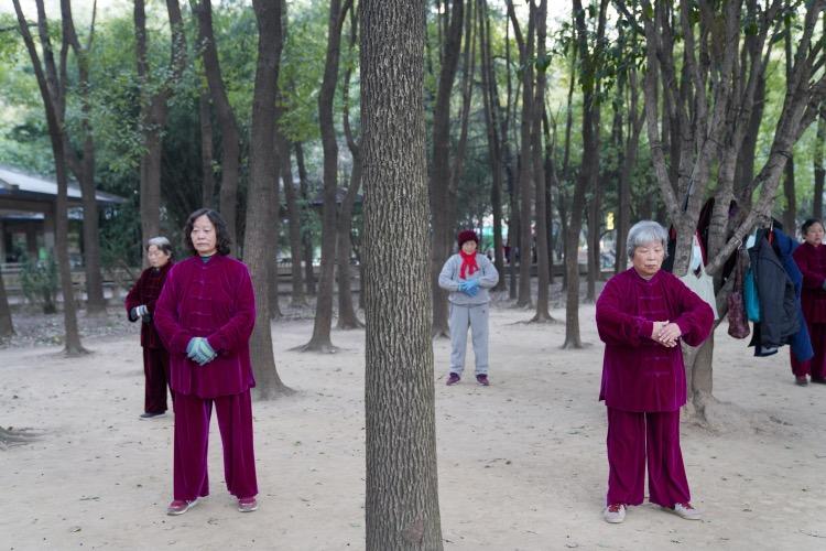 老人們在百步亭社區的樹林里鍛煉。