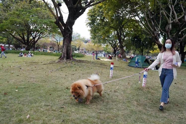 2021-03-09,中国广州,有市民带着宠物到二沙岛广州发展公园溜达。