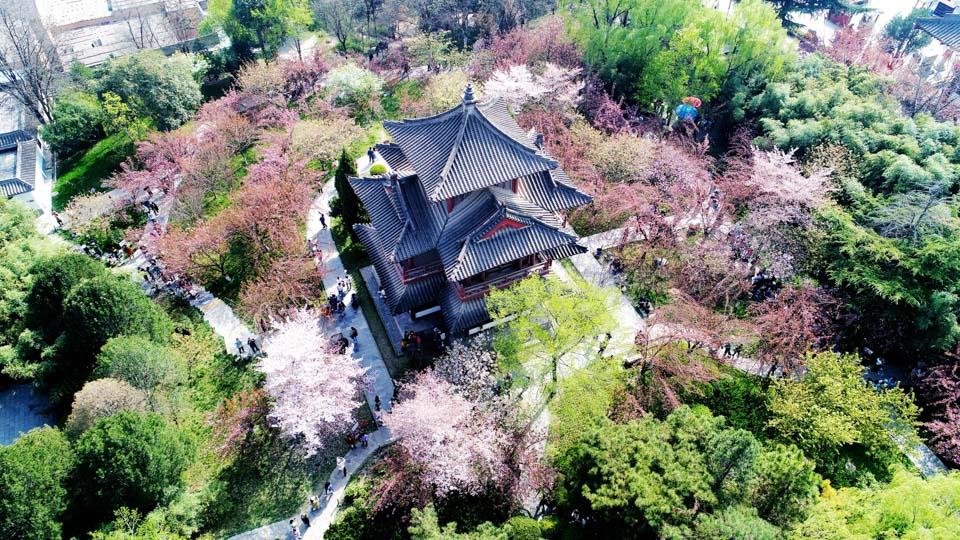 青龙寺的早春