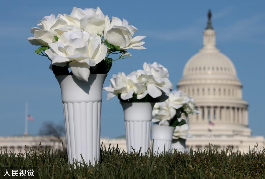 """絲絹花與后面的美國國會大廈。槍支暴力已成為美國社會一個無解的""""頑疾""""。"""