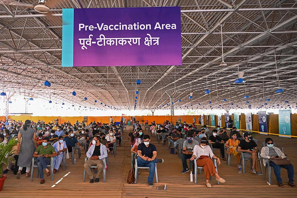 印度变异病毒有多少?