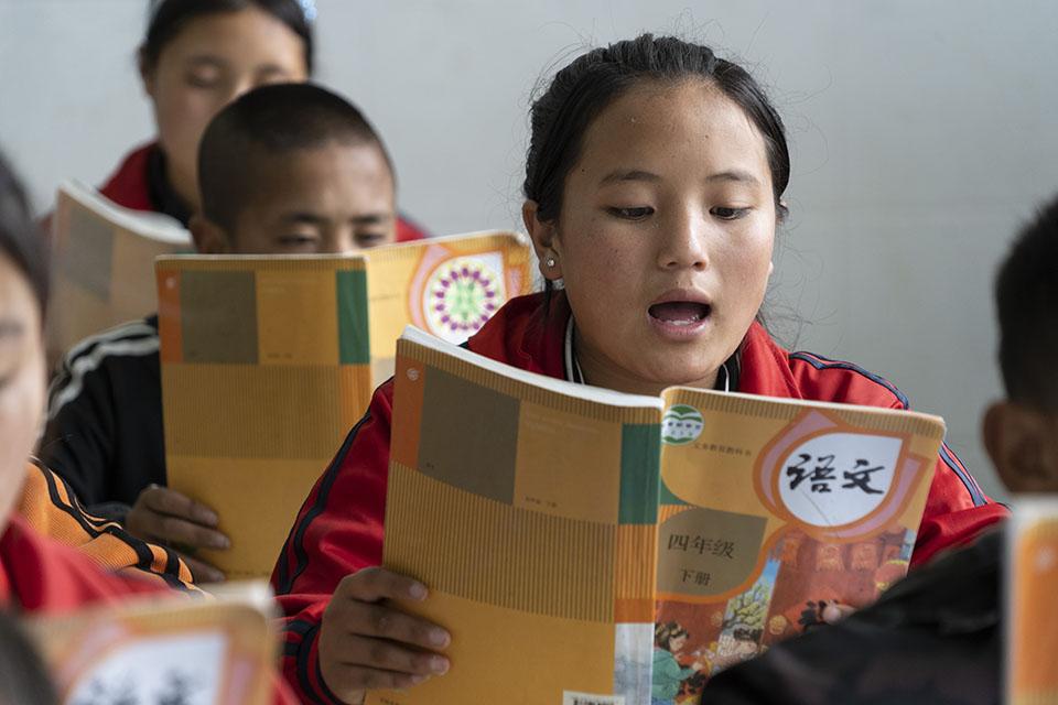 快評|小學課本內容被質疑,語文課也應講科學