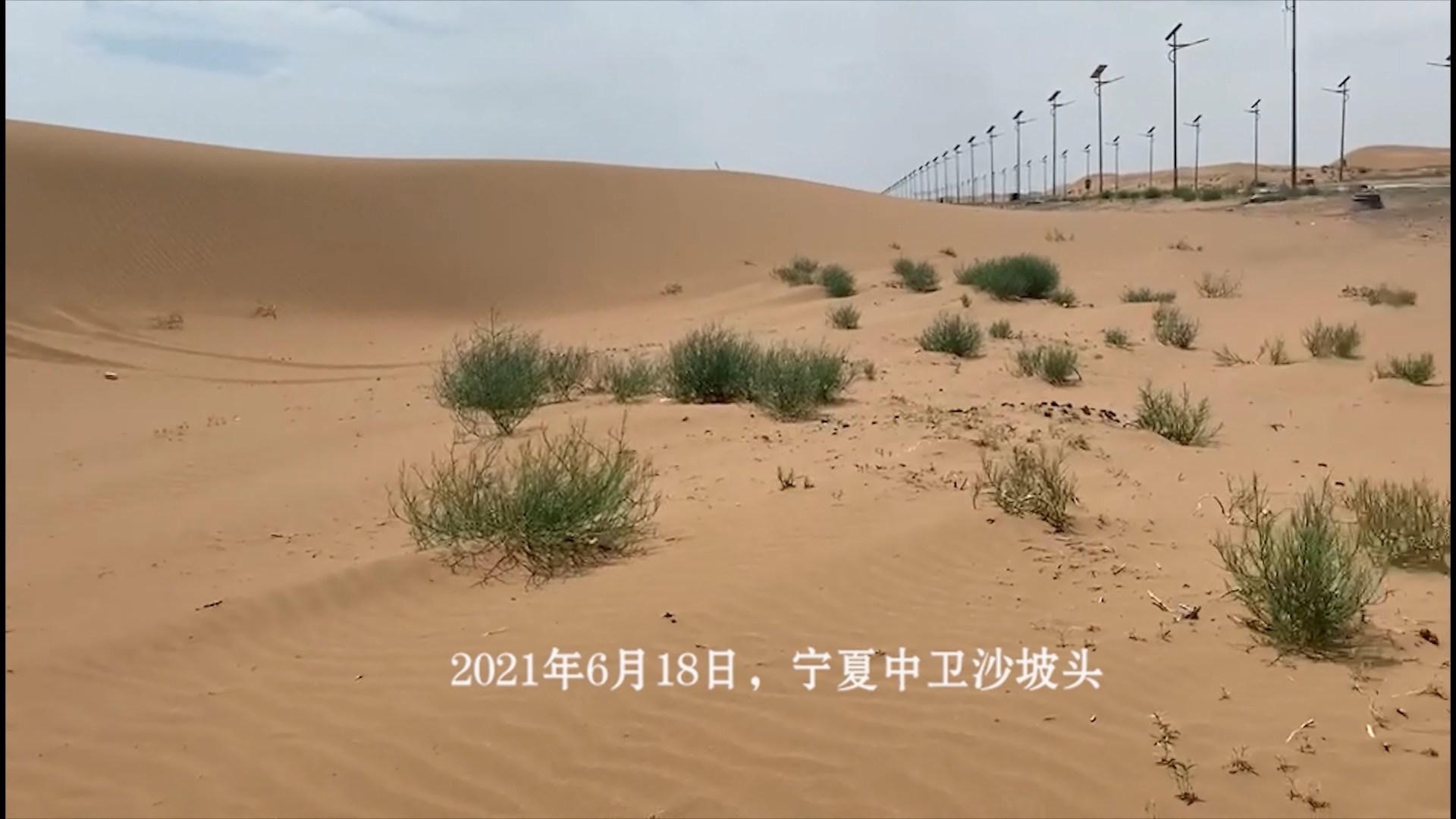 寧夏沙坡頭:沙漠不等于沙魔