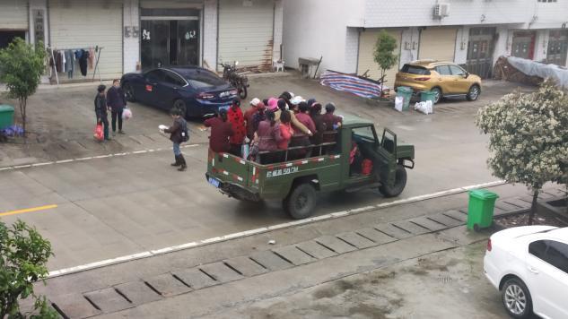 """农妇、茶山与""""皮卡车"""":安徽太湖12死事故背后的农村出行隐患"""