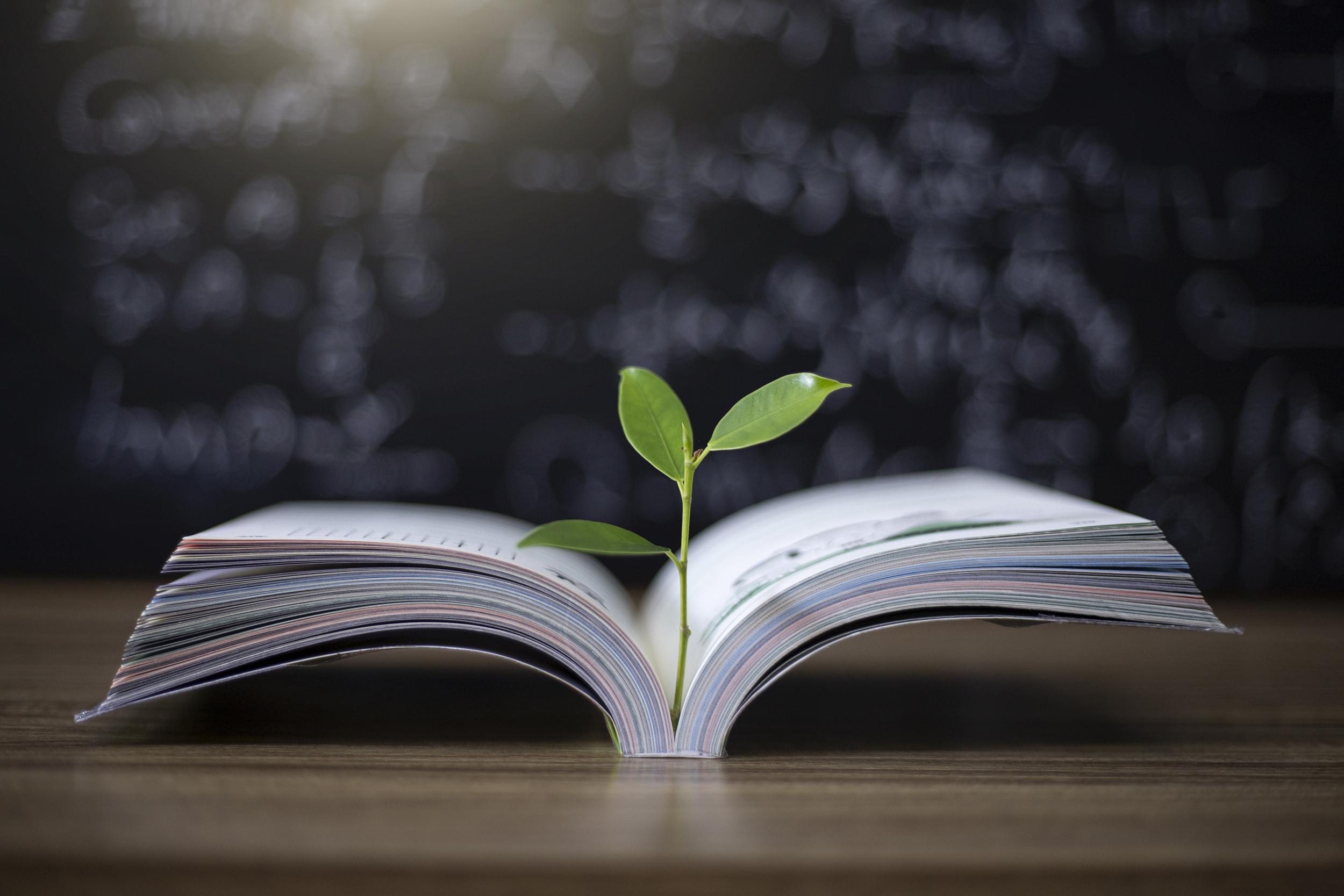 教师法修订拟提高教师门槛,清北生进中小学不失为有益尝试